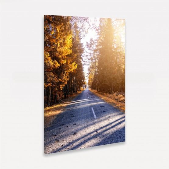 Quadro Paisagem Corredor de Árvores - Trees Around de Road