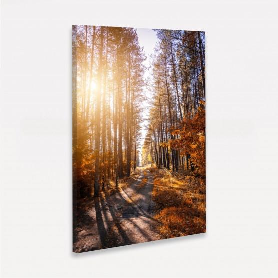 Quadro Paisagem Corredor de Árvores Ao Entardecer - Tree Trail
