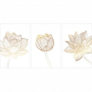 Quadros Flores Delicadas decorativo - Set Clean Flowers
