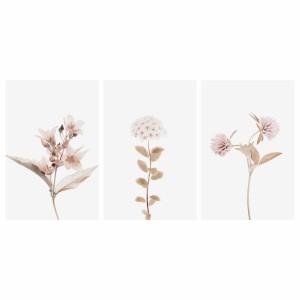 Quadros decorativos Flores Kit Floral Botânico 3 Peças