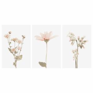 Quadros decorativos Kit Botânico Flores Plantas Clean Art