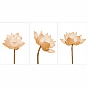 Quadro decorativo Flores Delicadas - Trio Sépia