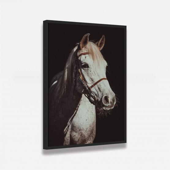 Quadro Cavalo Branco Sobre Preto em Arte