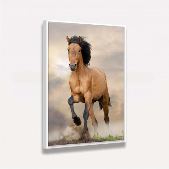 Quadro Cavalo Marrom Ao Campo decorativo