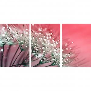 Quadro Flores Dente Leão Abstrato Tons Rosa