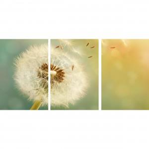 Quadro Flor Dente de Leão decorativo - Blossoming