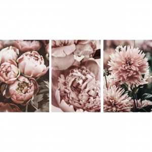 Quadros Flores Kit Floral - Peony Flowers