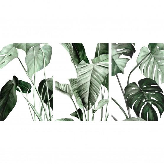 Quadros Folhas Verdes Botânico Jogo 3 Peças