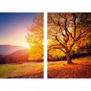 Quadro Árvore Paisagem do Entardecer - 2 Peças