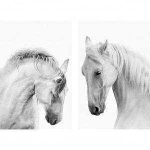 Quadro Cavalos Brancos Duo decorativo