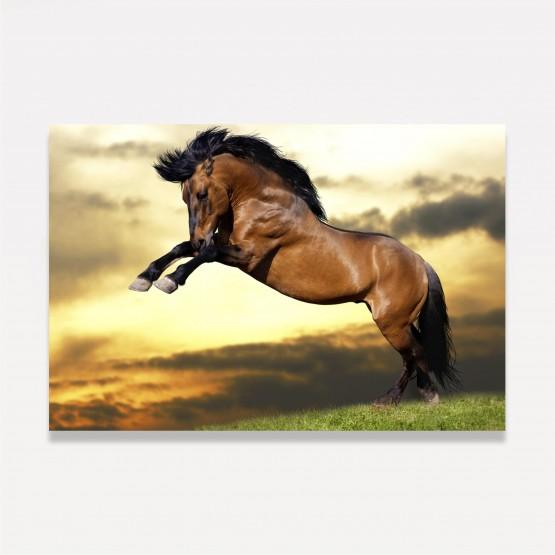 Quadro Cavalo Marrom Ao Entardecer decorativo