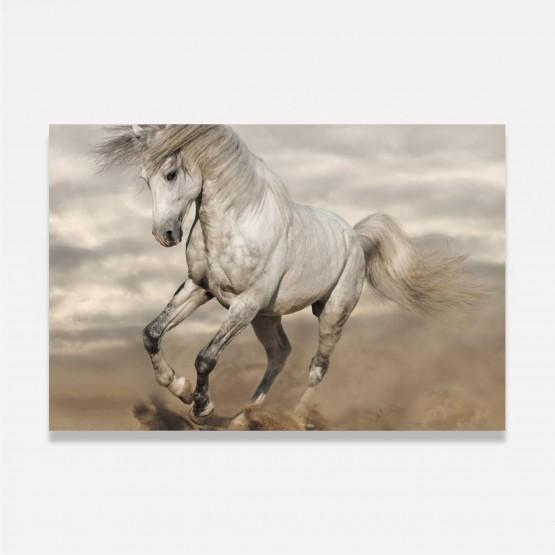 Quadro Cavalo Branco Galopando decorativo