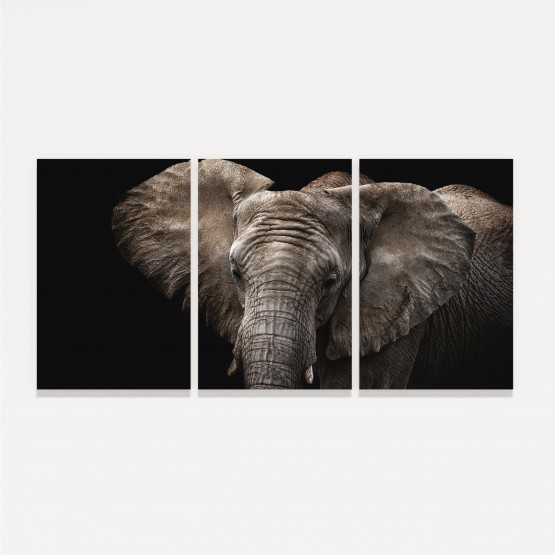 Quadro Elefante em Arte - 3 Peças