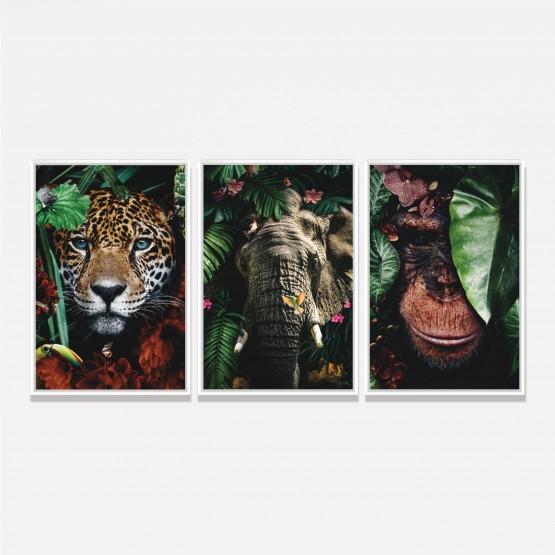 Kit Quadros decorativos Onça Elefante Macaco - Florest Art