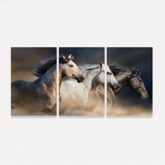 Quadro Cavalos em Arte - Trio de Cavalos