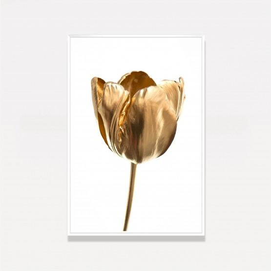 Quadro Flor Tulipa Dourada Sobre Branco