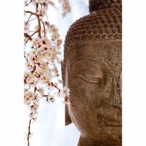 Quadro Buda e Flores de Cerejeiras Oriental