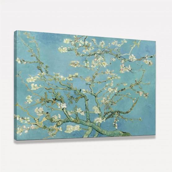 Quadro Amendoeira em Flor - Van Gogh