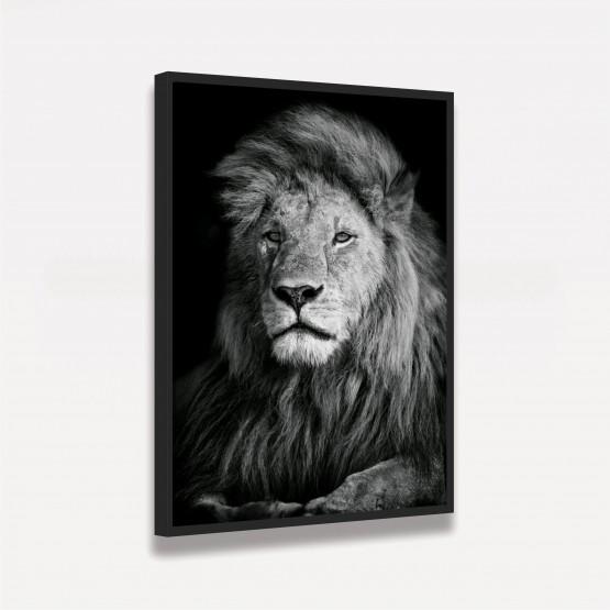 Quadro Leão em Preto e Branco - Thoughtful Lion