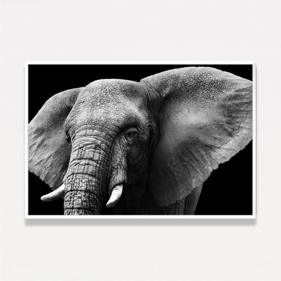 Quadro Elefante Close Preto e Branco