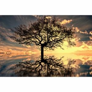 Quadro Árvore da Vida em Arte decorativo