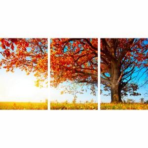 Quadro Árvore Florida Folhas de Outono Paisagem