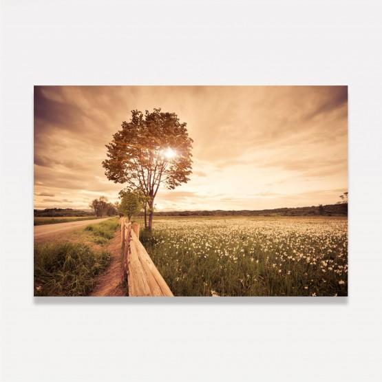 Quadro Árvore ao Campo Céu Incrível - Paisagem Natural