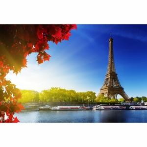 Quadro Paris Paisagem Torre Eiffel e Folhagem Vermelha