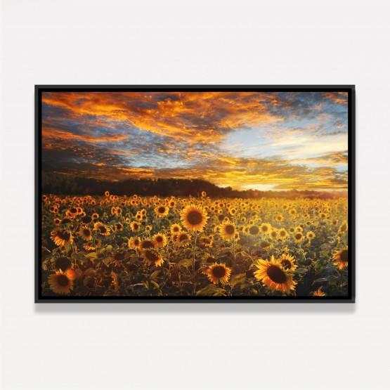 Quadro Flores Campo de Girassóis Ao Por do Sol