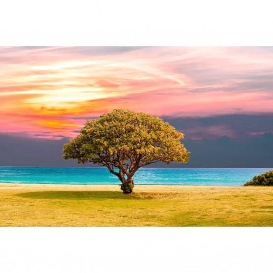 Quadro Árvore em Natureza - Lonely Tree Landscape