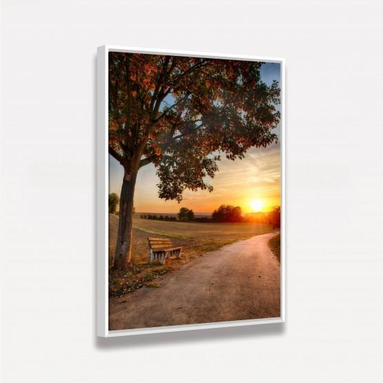 Quadro Árvore Banco e Por do Sol Paisagem decorativa