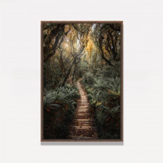 Quadro Paisagem Trilha de Madeira entre a Floresta