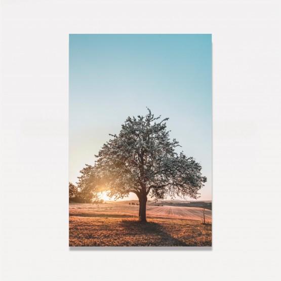 Quadro Árvore no Campo Paisagem decorativo