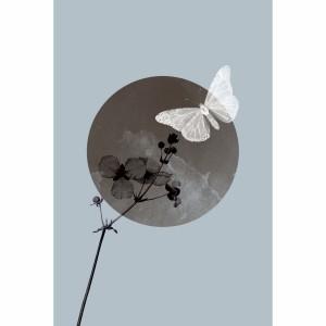 Quadro Borboleta Branca Sobre a Lua Cheia com Flor