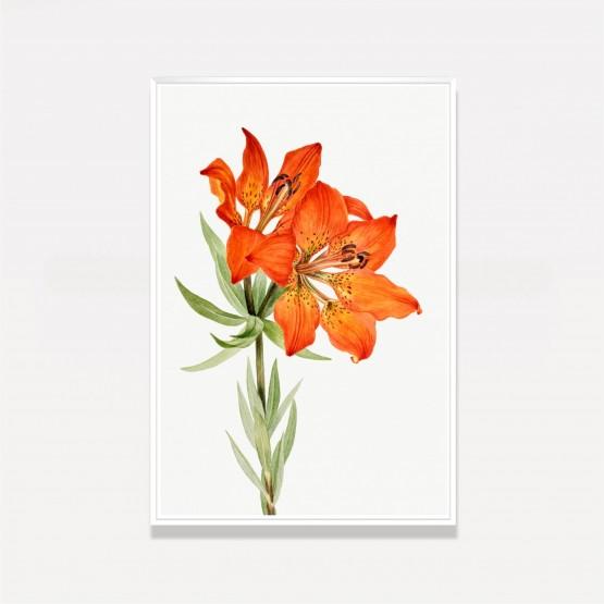 Quadro Flor de Lírio Vintage Laranjado