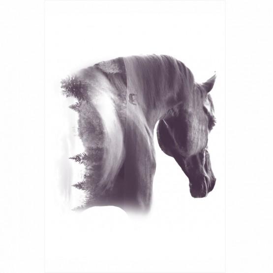Quadro Cavalo Artístico Flores Tons de Cinza