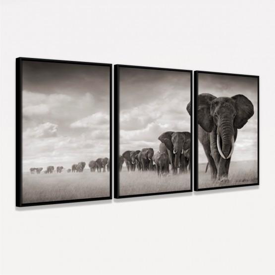 Quadros Decorativos Manada De Elefantes
