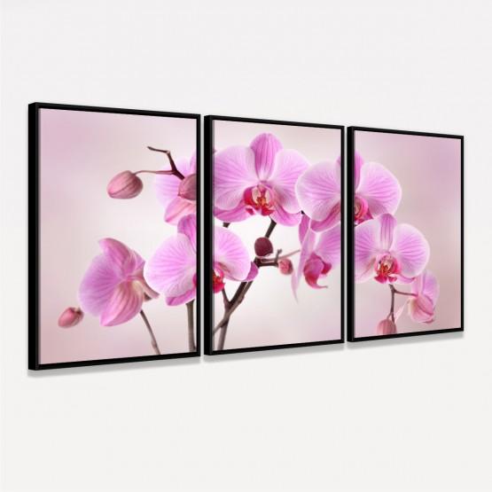 Quadro Flores de Orquídeas em Rosa decorativo