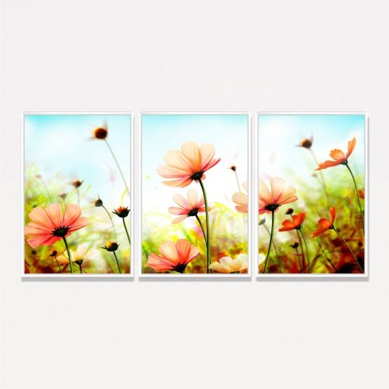 Quadro Flores Coloridas Cosmos em Arte - 3 Peças