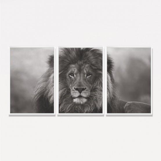 Quadro Leão De Judá Preto E Branco Decorativo